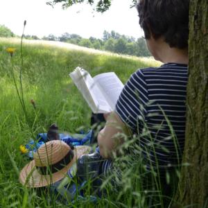 Persona asseguda en un prat amb l'esquena recolzada al tronc d'un arbre llegint